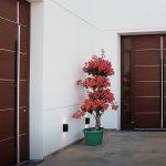 Pflege von Aluminium-Haustüren